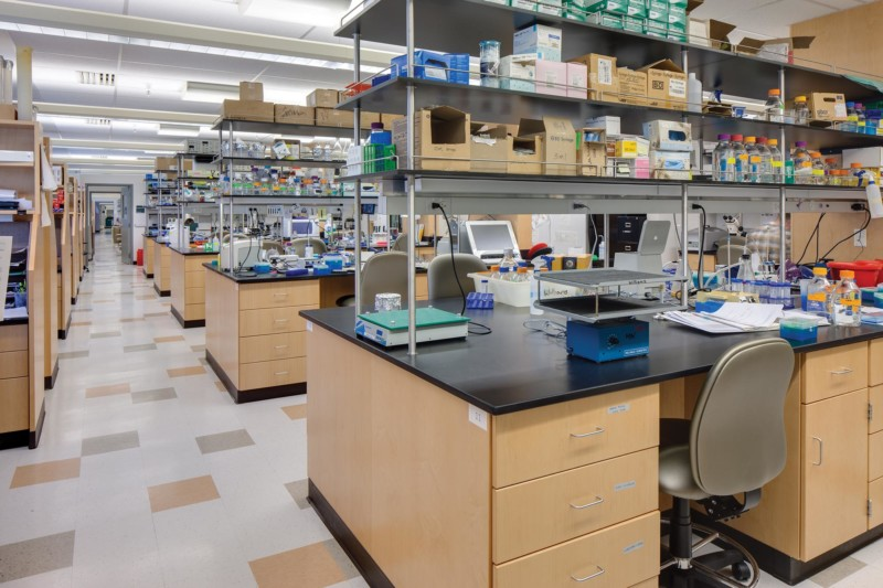 Biopolymers-Interior-Lab-bench