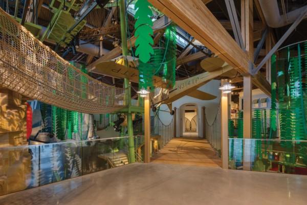 Museum-of-Natural-Curiosity-Interior-Rainforest