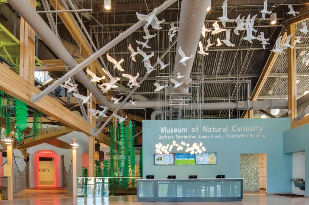 Museum-of-Natural-Curiosity-Interior-service-desk